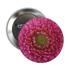 "Gerbera 2.25"" Button"