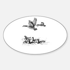 Canadian Geese Oval Decal
