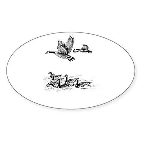 Canadian Geese Oval Sticker