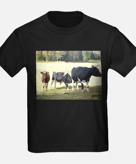 Cows T