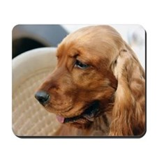 Cocker Spaniel dog Mousepad