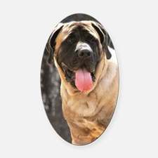 English Mastiff Dog Oval Car Magnet