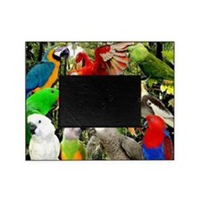 Frosty and Friends Exotic Bird Rescu Picture Frame
