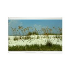 Sea Oats Magnets