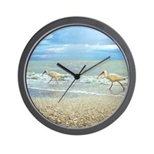 Sanibel Ibis Birds Strut Their stuff Wall Clock