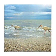 Sanibel Ibis Birds Strut Their stuff Tile Coaster