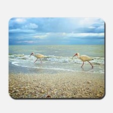 Sanibel Ibis Birds Strut Their stuff Mousepad