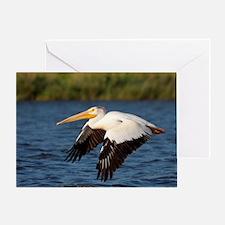 Pelican tree Greeting Card