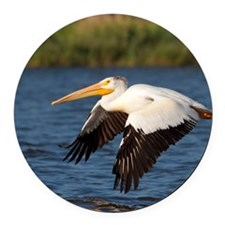 Pelican tree Round Car Magnet