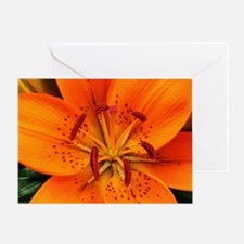 Tiger Lily Extreme Close Up Greeting Card