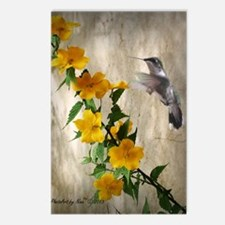 Hummingbird  flowers Postcards (Package of 8)