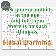 Global Warming Puzzle