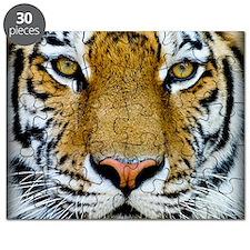 Big Cat Tiger Roar Puzzle