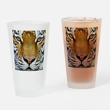 Big Cat Tiger Roar Drinking Glass