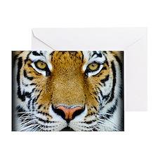 Big Cat Tiger Roar Greeting Card