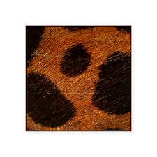 """Wild Square Sticker 3"""" x 3"""""""