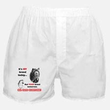 Neo BSL2 Boxer Shorts