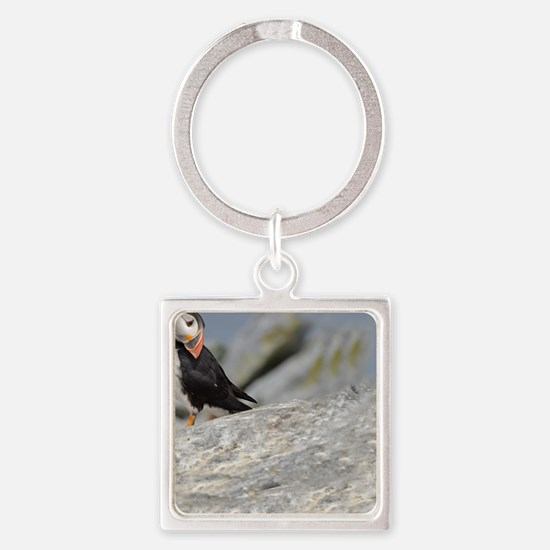 662_h_f  pic frame (1) Square Keychain