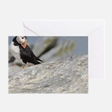 662_h_f  pic frame (1) Greeting Card