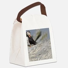 662_h_f  pic frame (1) Canvas Lunch Bag