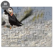 662_h_f  pic frame (1) Puzzle