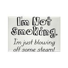 Not Smoking Rectangle Magnet