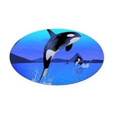 Orca 1 Oval Car Magnet