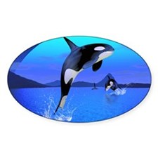 Orca 1 Decal