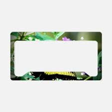 Eastern Tiger Swallowtail License Plate Holder