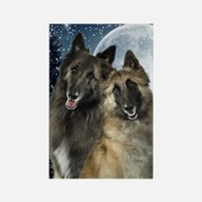 Belgian Tervuren Rectangle Magnet