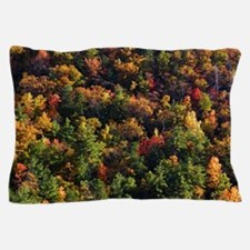 A Slice of Fall Pillow Case