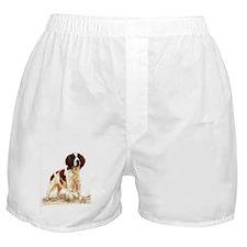 English Springer Spaniel Dog Portrait Boxer Shorts