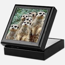 Meerkat 002Q Keepsake Box