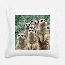 Meerkat 002Q Square Canvas Pillow