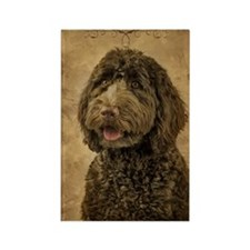 Labradoodle Rectangle Magnet