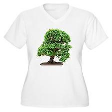 Punica Granatum b T-Shirt