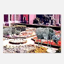 Garden of Flamingo Rhinos Postcards (Package of 8)