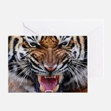 Tigers, Big Cat Football Greeting Card