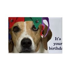 Beagle Birthday Card Rectangle Magnet