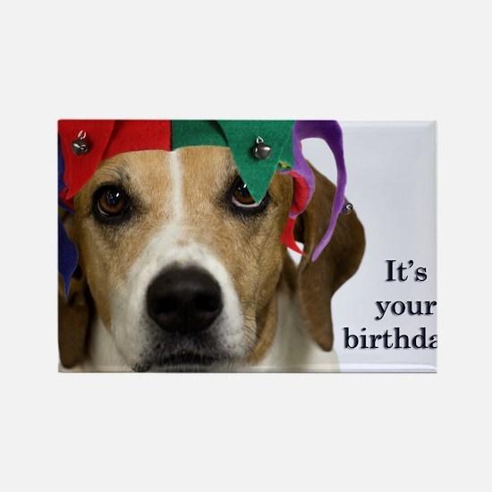 Beagle Birthday Card Rectangle Magnet