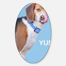 Beagle Yum Birthday Sticker (Oval)