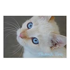 Blue Eyed Kitten Thank Yo Postcards (Package of 8)