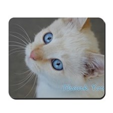 Blue Eyed Kitten Thank You Mousepad