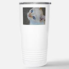 Blue Eyed Kitten Thank  Travel Mug