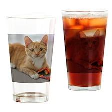 Yellow Tabby Kitten Birthday Drinking Glass