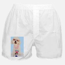 Bichon Frise Birthday Boxer Shorts