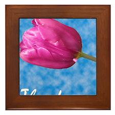 Razzmic Sky Tulip Framed Tile