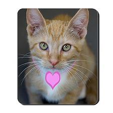 Yellow Tabby Kitten Pink Heart Birthday Mousepad
