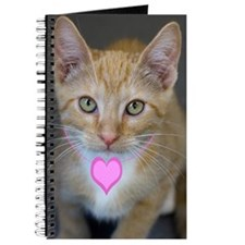Yellow Tabby Kitten Pink Heart Birthday Journal