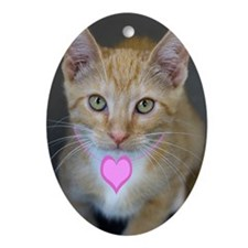 Yellow Tabby Kitten Pink Heart Birth Oval Ornament